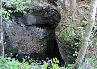 Valhalla Cave Preserve